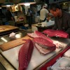 Tuna Fishery – Japan 2010