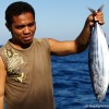 Pole and LIne Fishery – Indonesia 2011