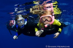 Snorkelers and Divers