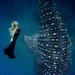 W22: Whale Shark Fashion -  Harmony with Nature - Hannah Fraser