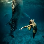 W1: Whale Shark Fashion - The Rising Goddess- Hannah Fraser
