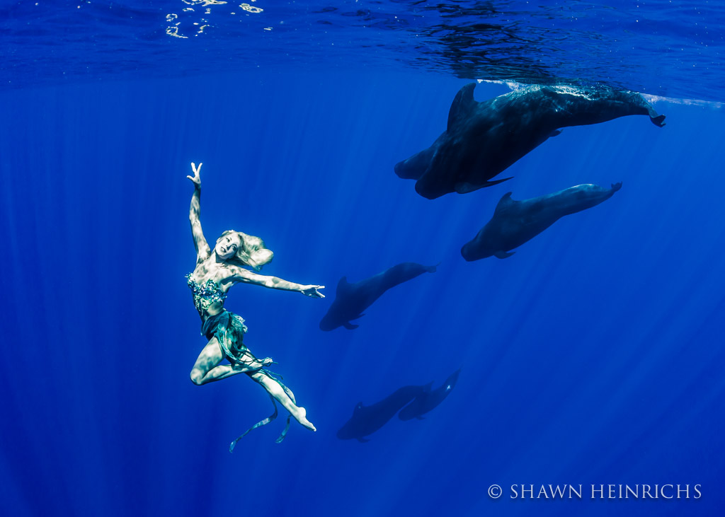 Hannah Fraser dances with a pod of Pilot Whales