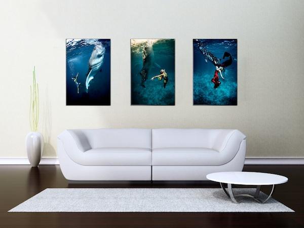 living room art prints. LivingRoom WhaleSharks sm  Fine Art Prints Blue Sphere Media