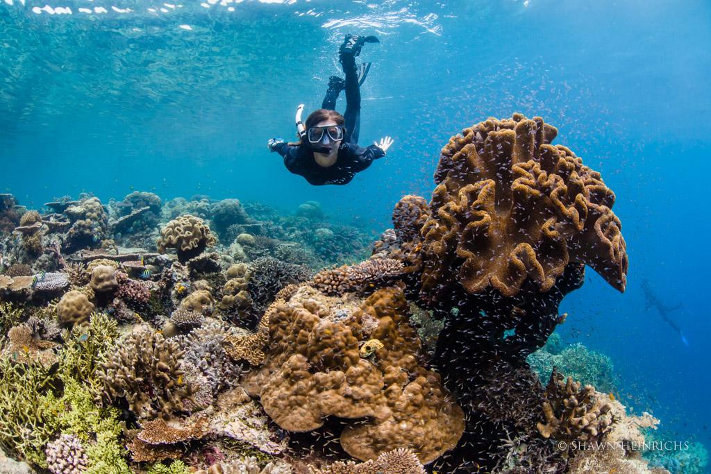 CI's Carla Kerstan Snorkeling the Reefs of Jef Nabi