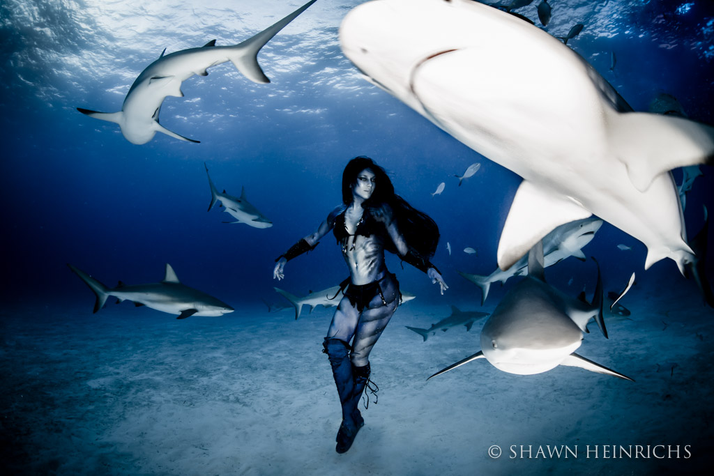 Hannah Fraser dances at dusk with reef sharks