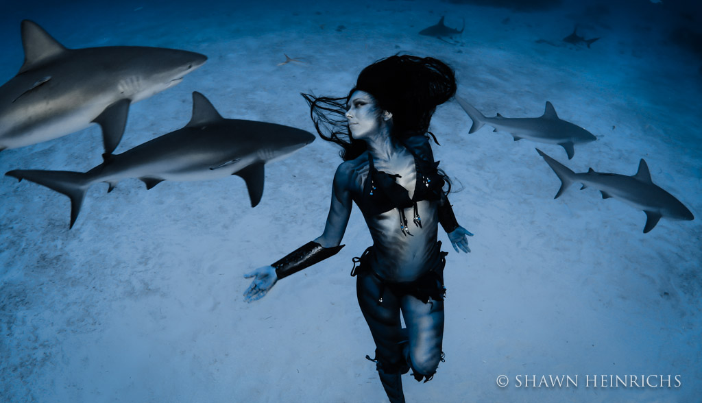 Hannah Fraser at peace in a swarm of reef sharks